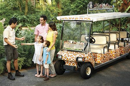 【易途8】新加坡日间动物园 门票送游园小火车 儿童票
