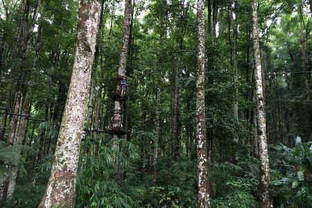 巴厘岛树顶冒险公园门票(儿童票)