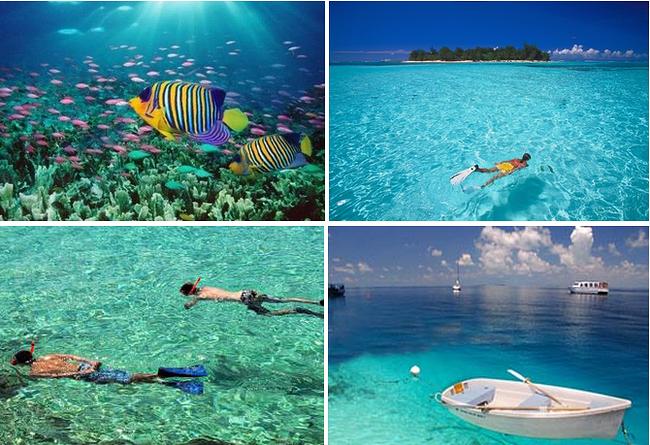 沙美岛 五岛快艇浮潜半日游 2个浮