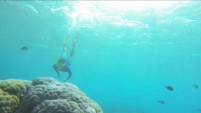 巴厘岛蓝梦岛和金银岛双岛出游(1人起订)241630