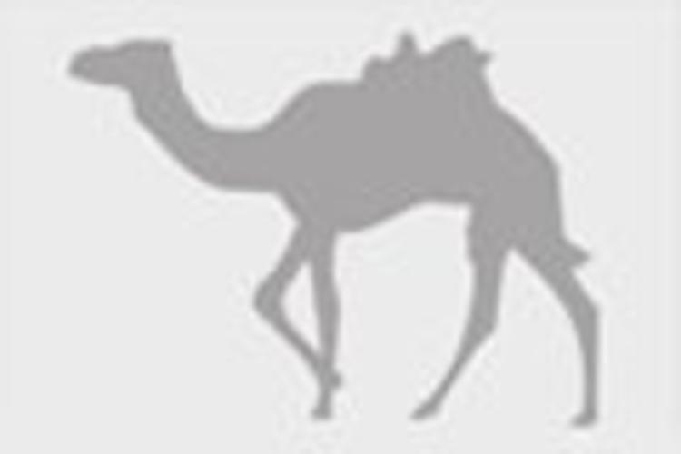 Emirate_of_Dubai旅游