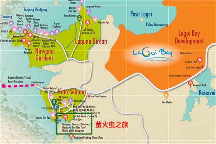 新加坡民丹岛萤火虫探索之旅