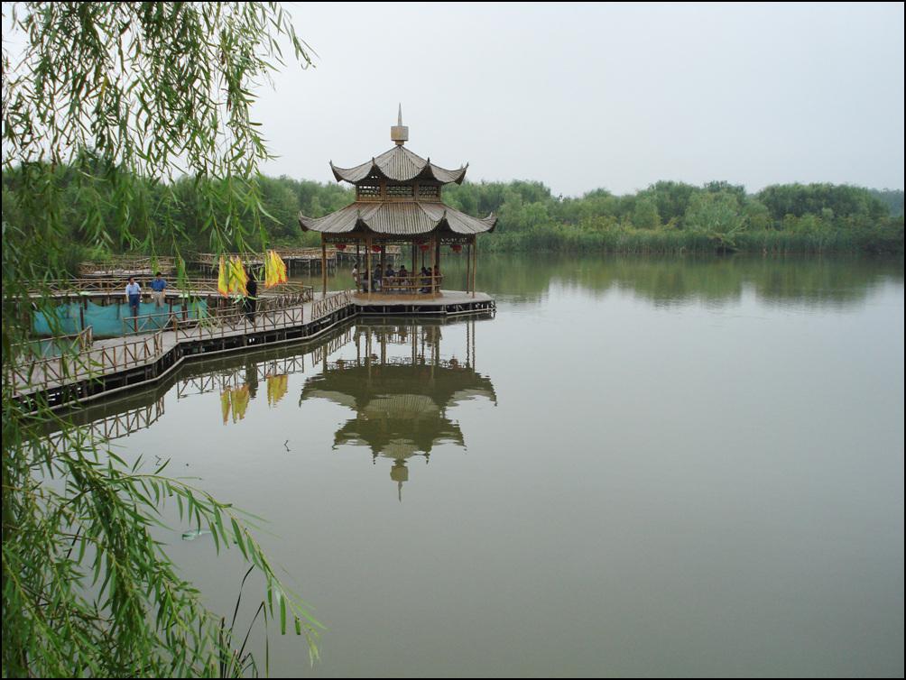 上海至兴化千岛菜花风景区 溱湖湿地 溱潼古镇豪华二日游!