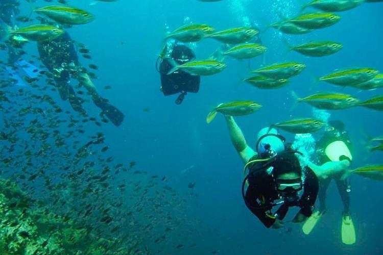 涛岛珊瑚湾有暹逻仙境之称,美丽的海湾,清澈的海水奇形的大石,丰富的
