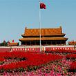 【5大景点】北京天安门广场+故宫+八达岭长城+杜莎夫人一日游