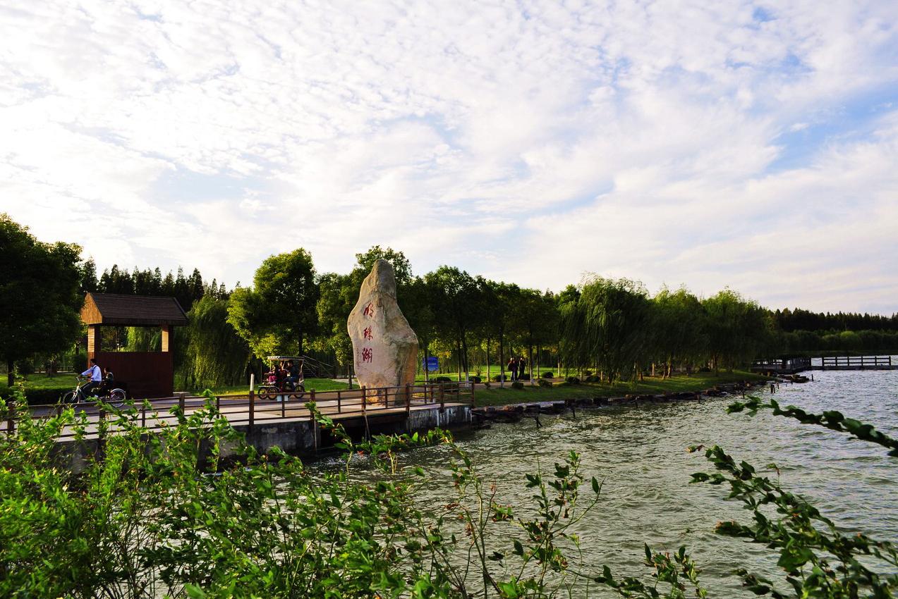 崇明东平国家森林公园,西沙湿地双人2日尊贵游!