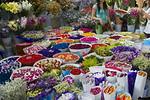 早到昆提示浏览鲜花市场____送机