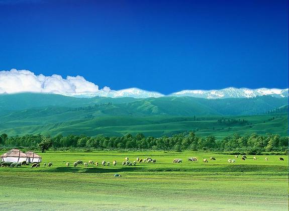 内蒙古博物馆双卧7日游!图片