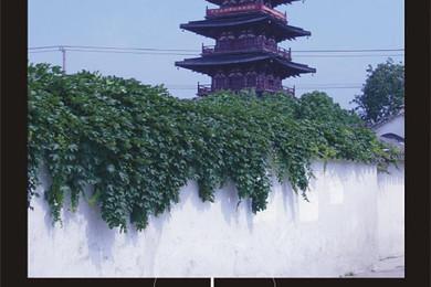 程覆盖南京知名景点 朝天宫,莫愁湖,中山陵等知名景点 游览浦东新图片