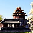 【五环内可选上门接】八达岭长城+颐和园+清华北大/鸟巢一日游