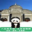【亲子游】八达岭长城+北京动物园联票(含熊猫馆)纯玩一日游