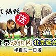 【9点发】北京海洋馆+动物园(含熊猫馆)(可选三环内上门接)