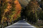 亚丁自然保护区一日游--34.6km--日瓦--76km--稻城