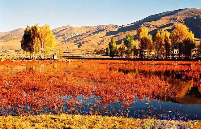 成都出发,甘孜州康定情歌木格措风景区,稻城亚丁7天6晚跟团游
