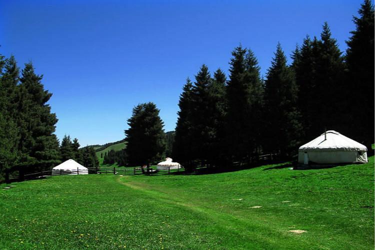 乌鲁木齐南山牧场一日游西白杨沟