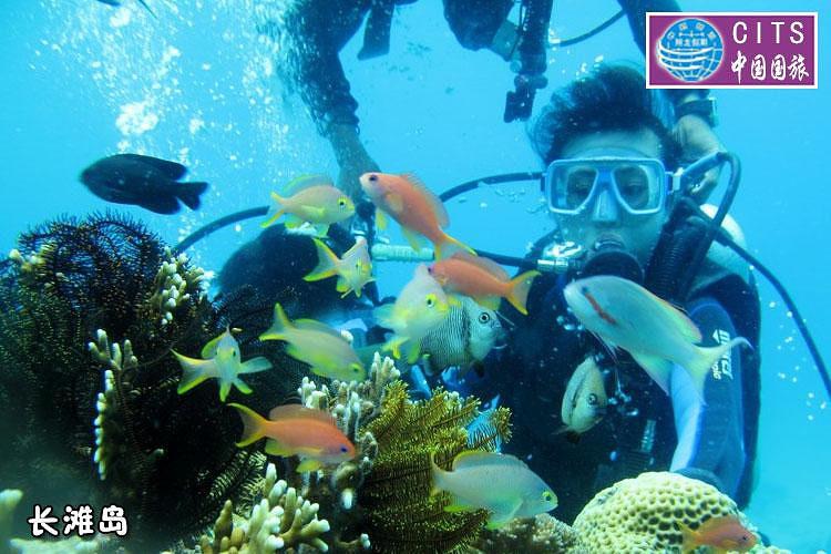壁纸 海底 海底世界 海洋馆 水族馆 750_500