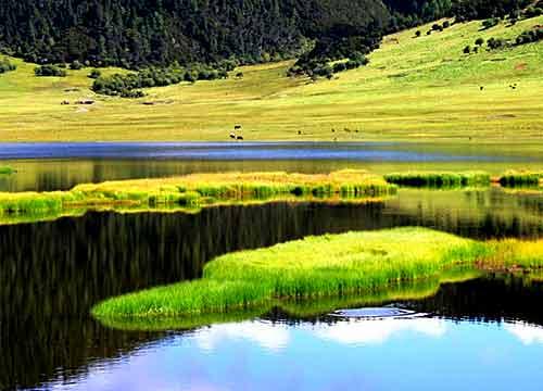 普达措门票团_清明节后香格里拉普达措国家公园门票将涨至2