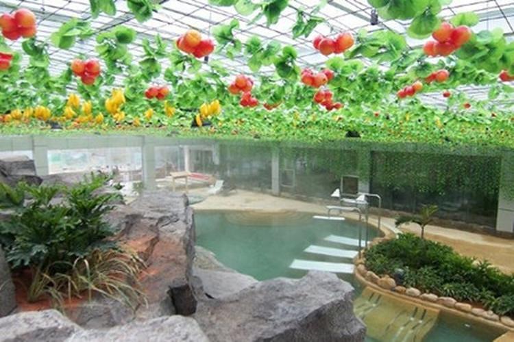 热泉河汤谷露天温泉共设动感区,百草区,情侣休闲区,天体浴区,温泉