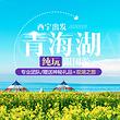 青海湖-茶卡盐湖双湖一日游 【超级头等舱+赠塔尔寺直通车】