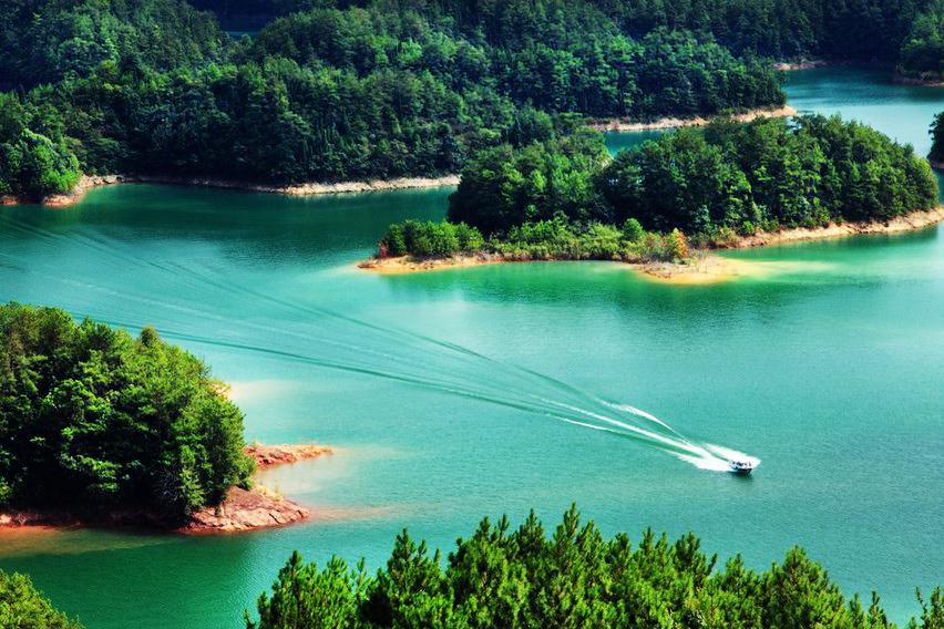 千岛湖中心湖区游船+森林氧吧入住千岛湖丽景酒店(2晚