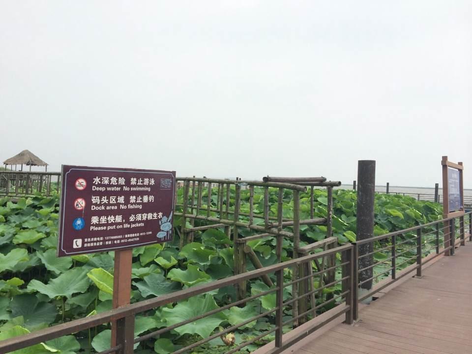 莲花岛景区(忆园+莲花岛来回游船(联票))2张+苏州福朋