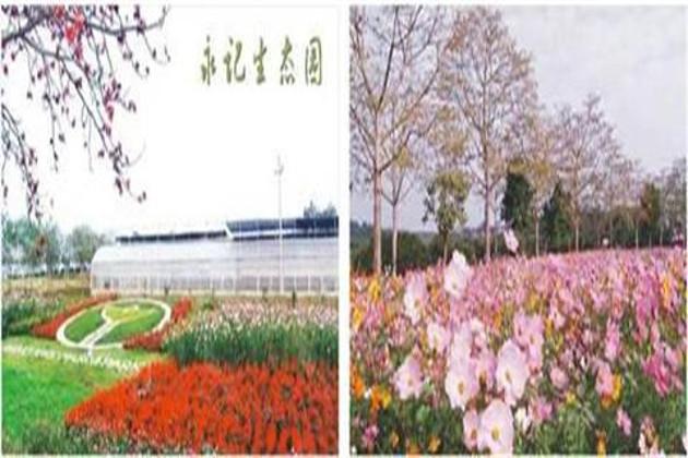 酒店 约10分钟→永记生态园(动物园) 约1.5小时→深圳