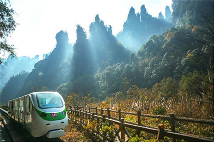 早餐之后bus前往张家界国家森林公园景区(门票,保险248元/人已含)
