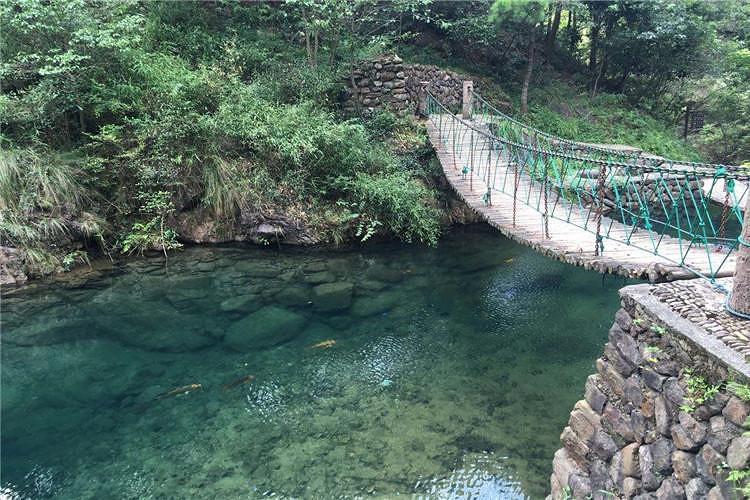 大奇山国家森林公园位于浙江省杭州市桐庐县,在富春江南岸,是