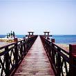 烟台市内养马岛、栈桥、月亮湾、东炮台、烟台山一日游