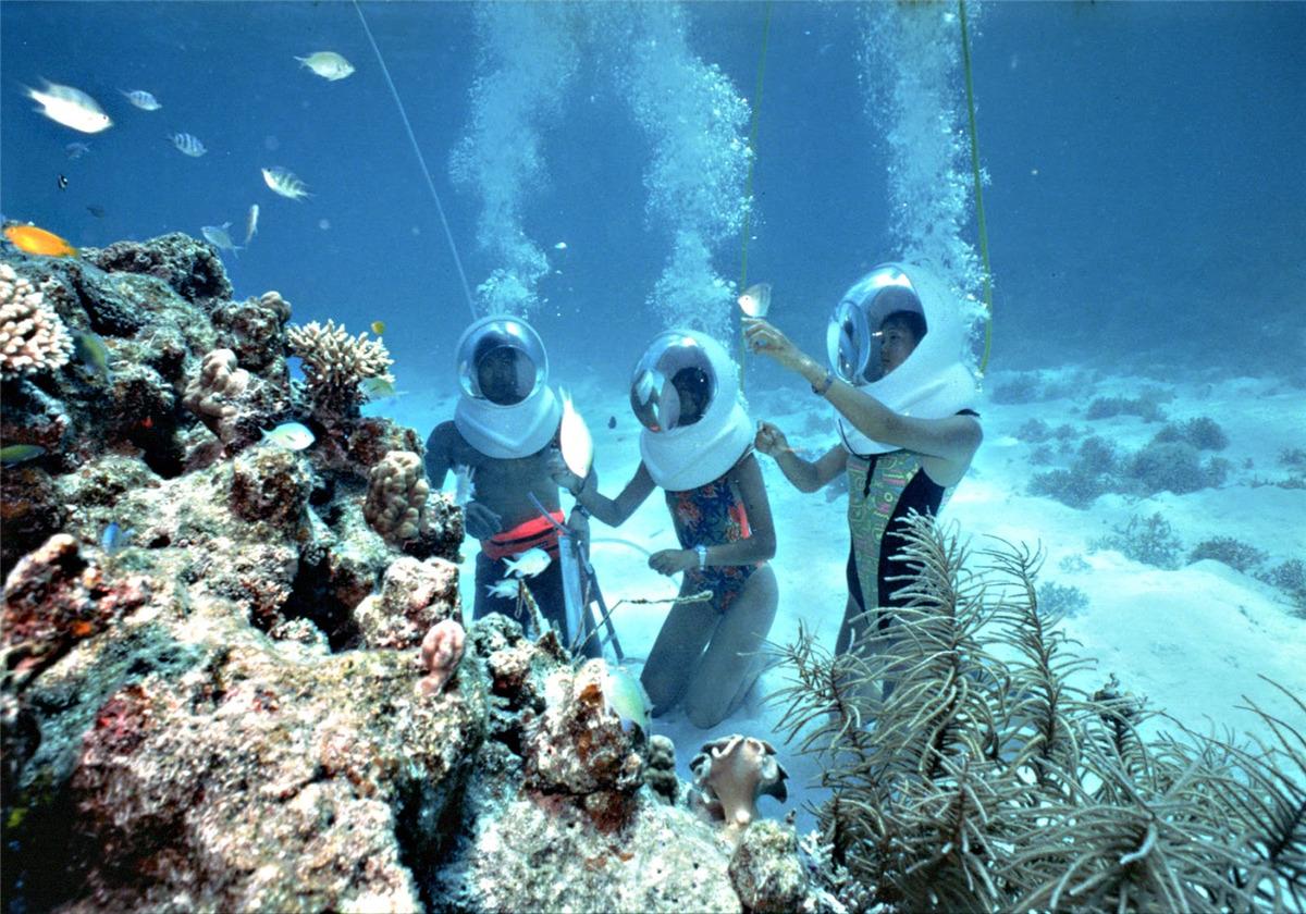 乐巴厘乐享海岛1日游★海底漫步+种珊瑚+放生尼莫鱼