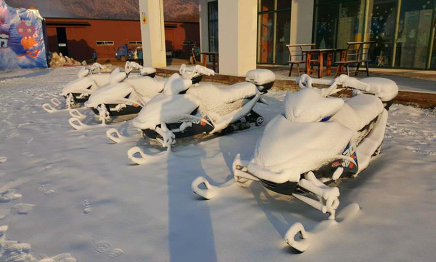 玩青岛滨海学院世界动物标本艺术馆 玩青岛藏马山滑雪