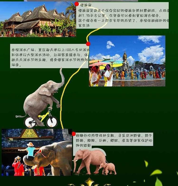飞6日游|小熊猫庄园