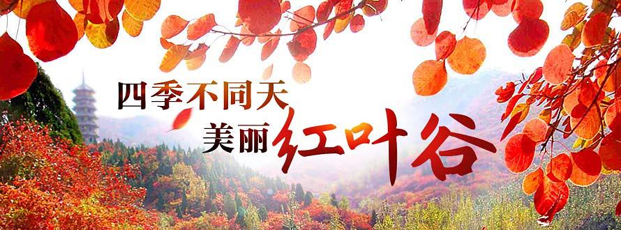 山东济南红叶谷