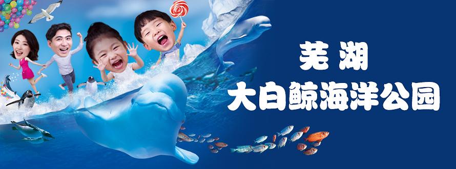 芜湖大白鲸海洋馆