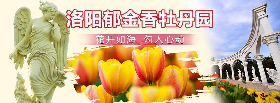 洛阳郁金香牡丹园