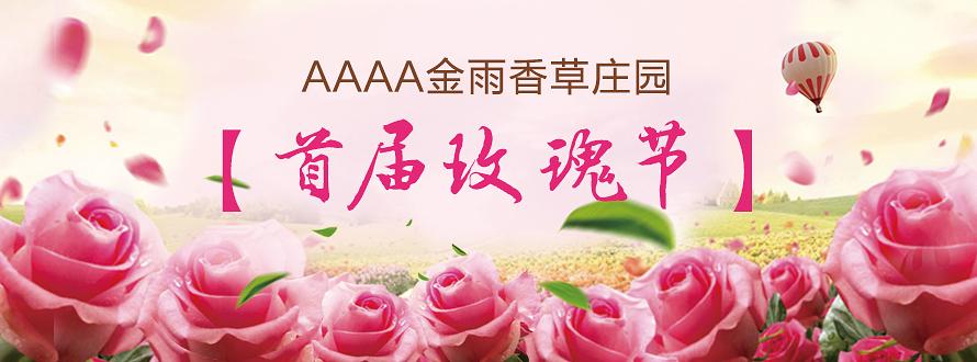 金雨香草庄园首届玫瑰节