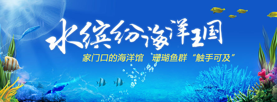 水缤纷海洋王国