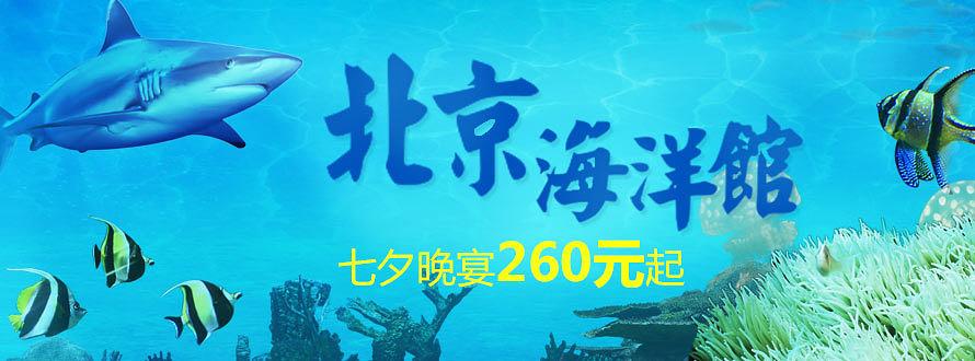 北京海洋馆七夕特惠