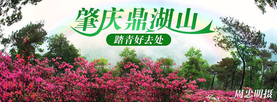 鼎湖山春季