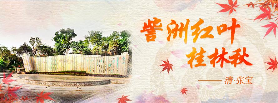 桂林訾洲岛景区