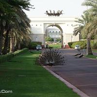 迪拜酋长大皇宫