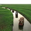 苇海湿地景区