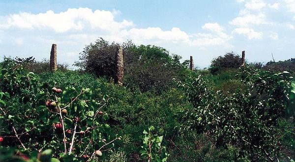 我们正在努力补充 景点介绍 羊头山炎帝文化风景名胜区,位于高平北部