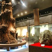 乌木文化博览苑