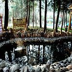 鸡公山依云森林温泉