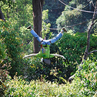 清迈丛林飞跃