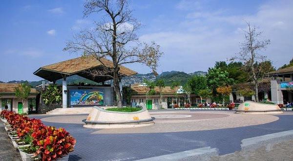 木栅动物园