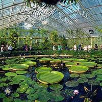 基尤植物园