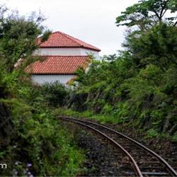 ECOLAND英式森林小火车