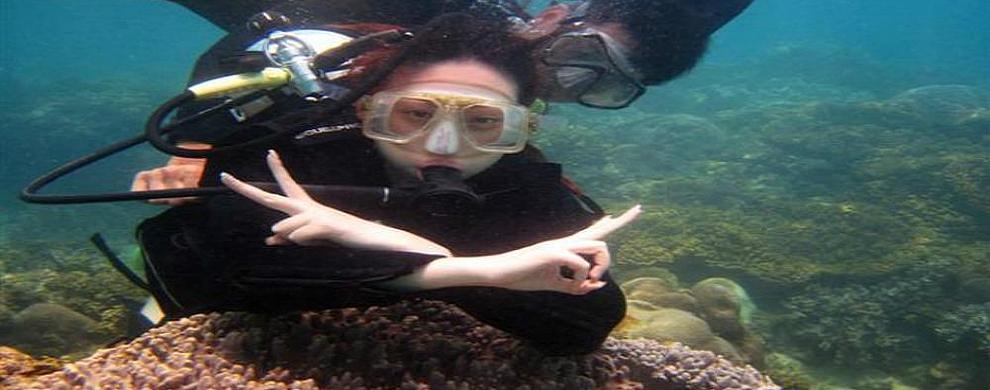 畅游海底世界